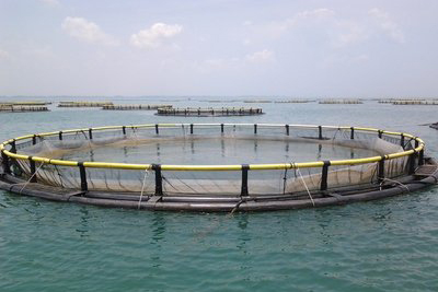 水质分析千亿体育平台在水产养殖中的重要性