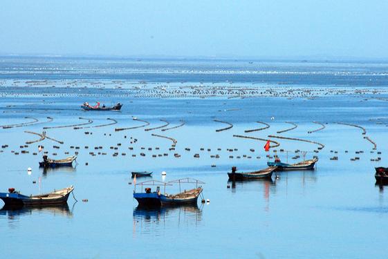 在线式百分比工业盐度计在海水养殖中的应用